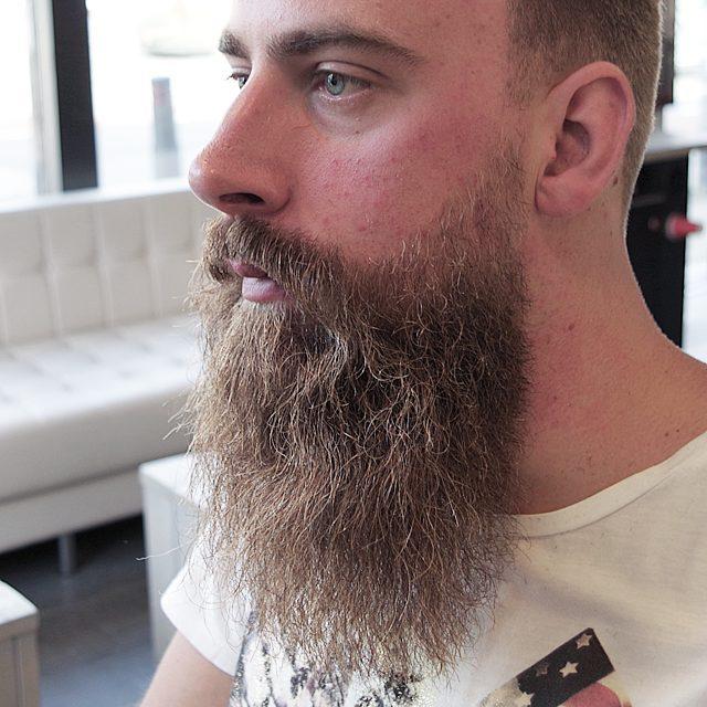 Длинные бороды
