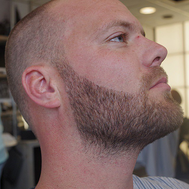 Бороды